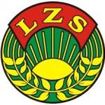 logolzs1